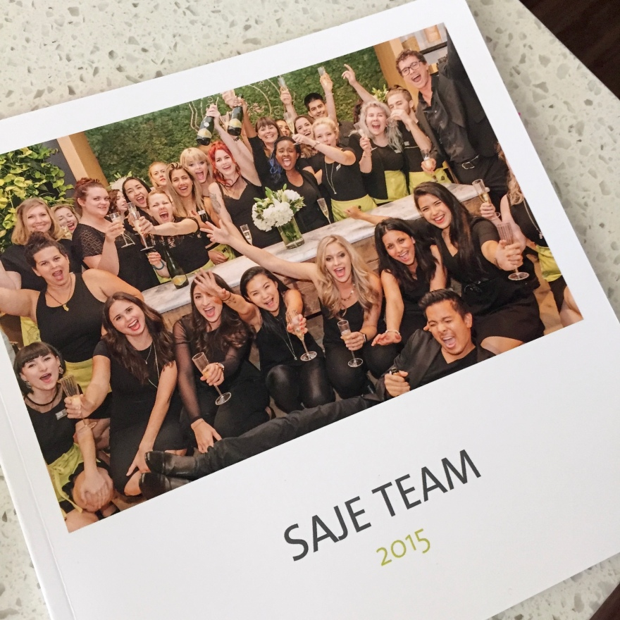 Saje Team 2015